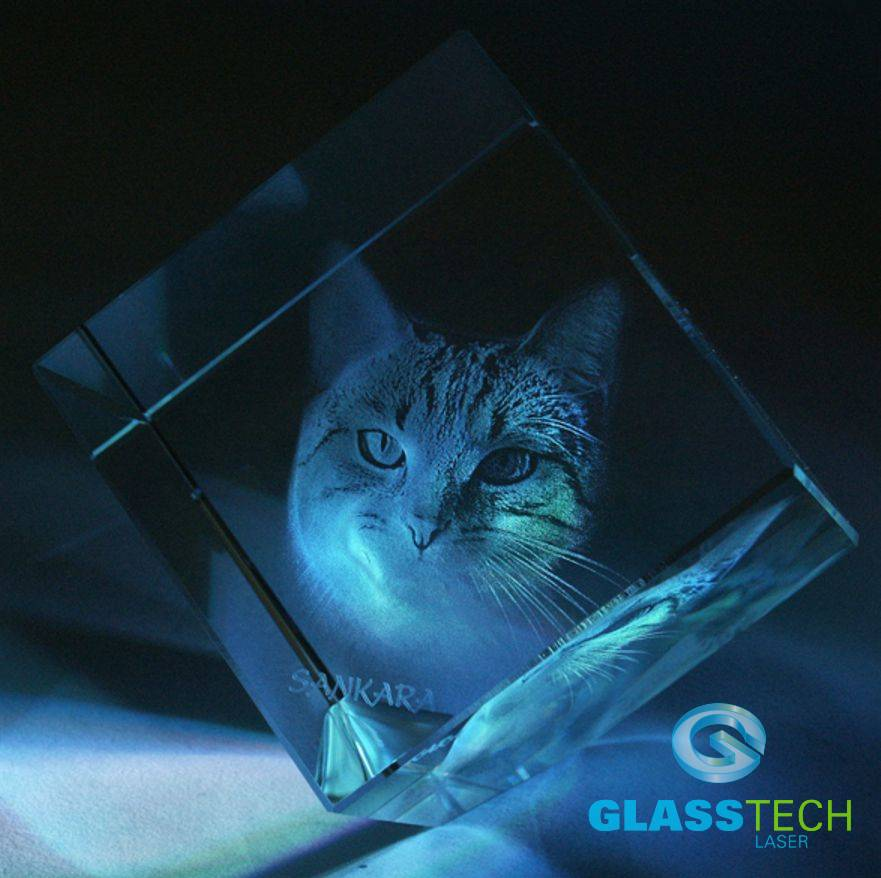 Cat in cube on the corner