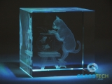 3D cat in glass cube 60 mm
