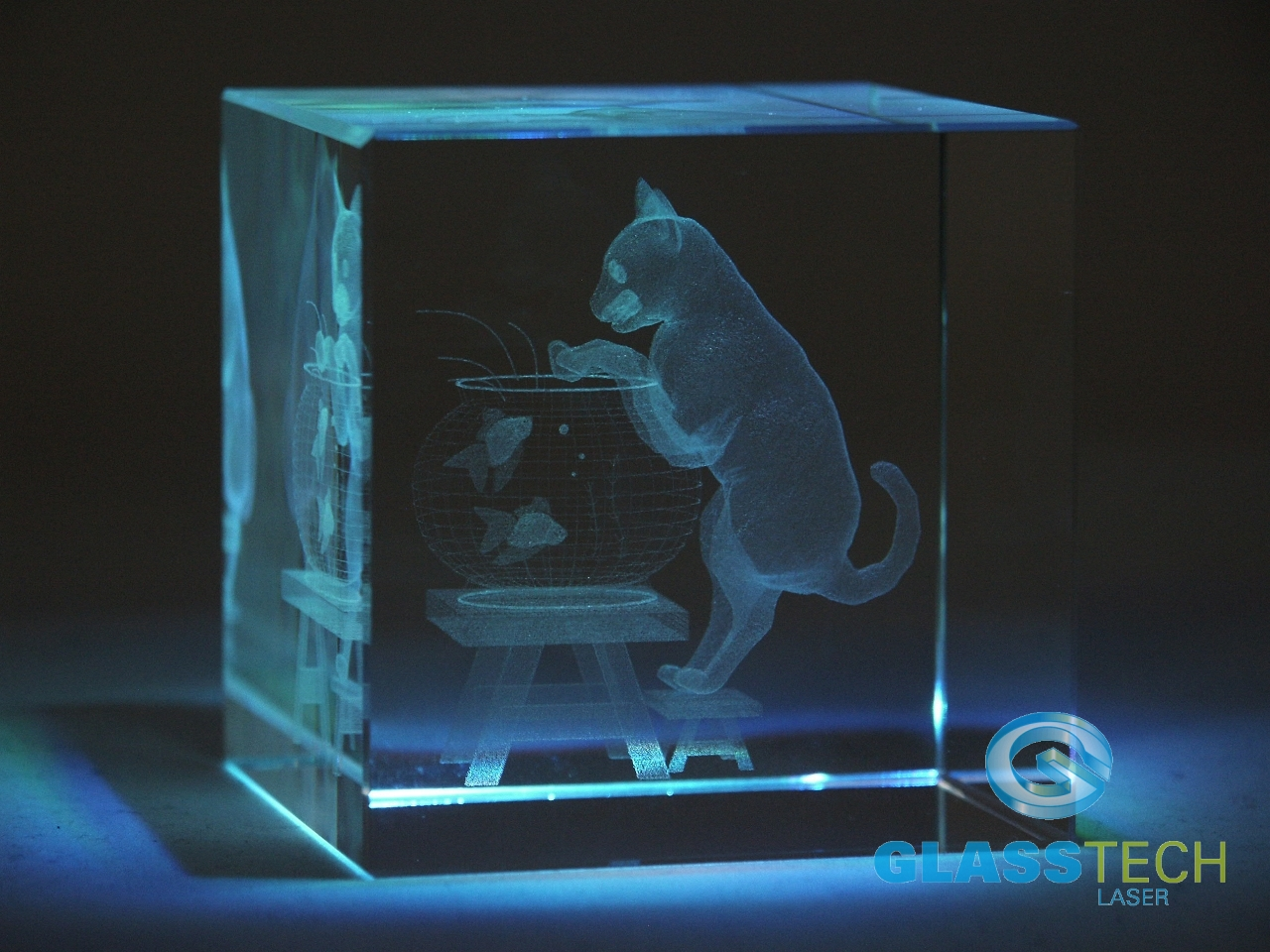 laser engraved 3d cat in glass cube